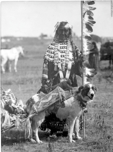 vintage-dogs.com_Native_American_women_holding_staff_with_dog_pulling_travois.jpg